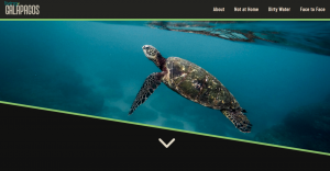Living Galapagos Web Design
